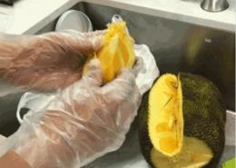 Disposable CPE Antibacterial Gloves