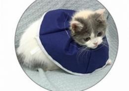 Pet Soft neck collar protector
