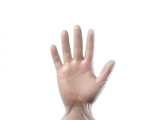 Powder Free Disposable Hand Clear PVC glove
