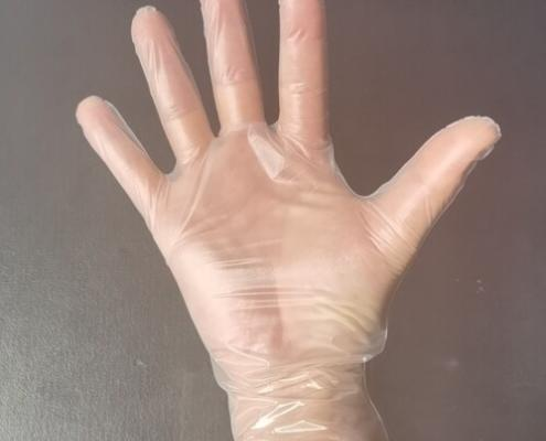 tpe clear vinal food service glove